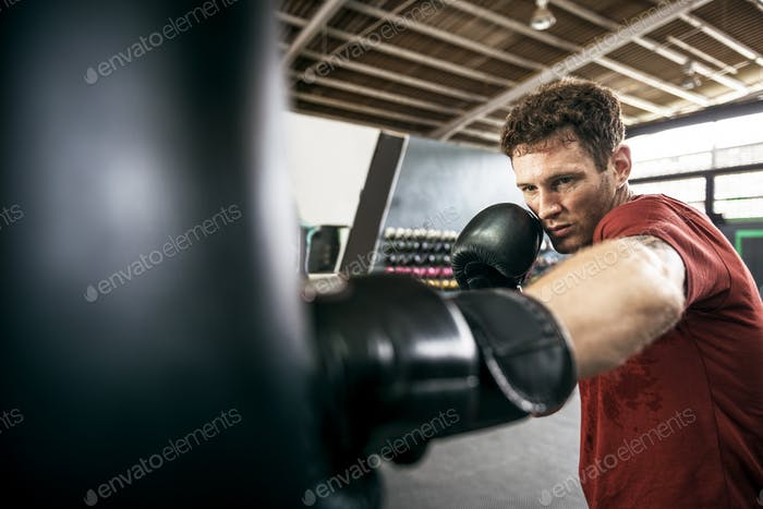 Thumbnail for Man Exercise Athletic Boxing Concept