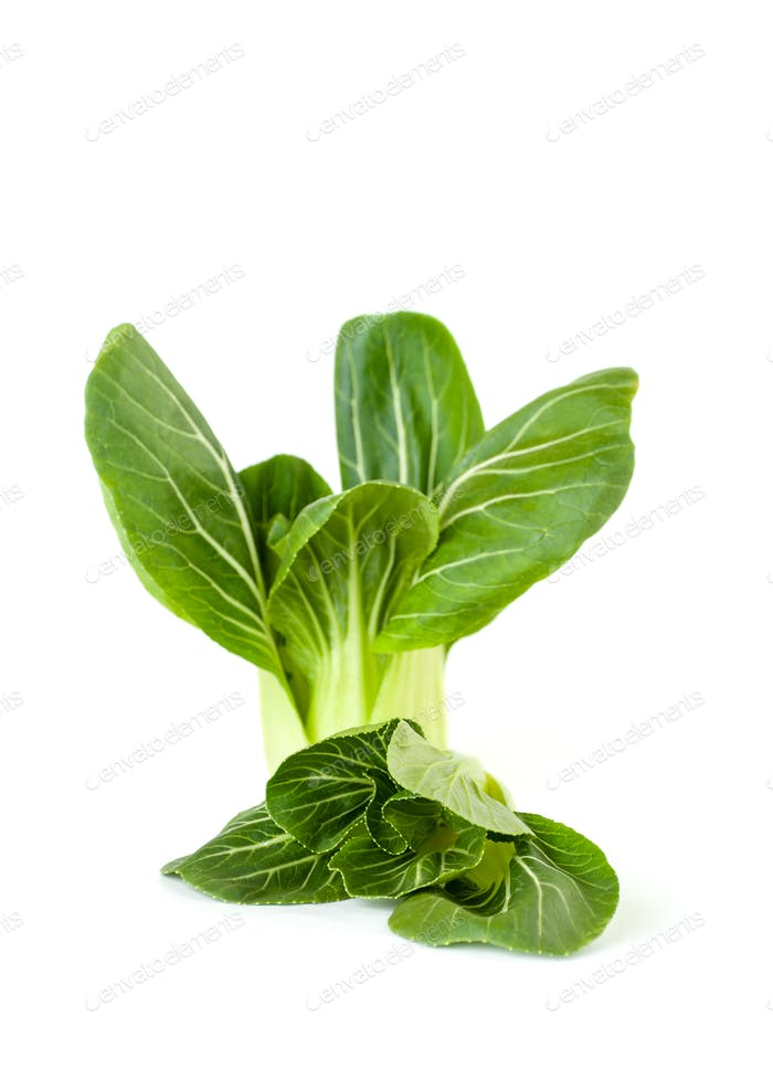 Fresh Chinese cabbage (Pak-choi) on a clean white background. Is