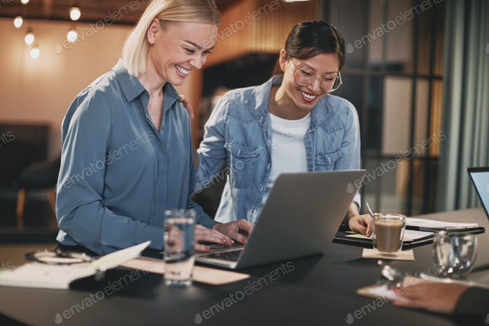 Smiling businesswomen working on a laptop during an office meeting