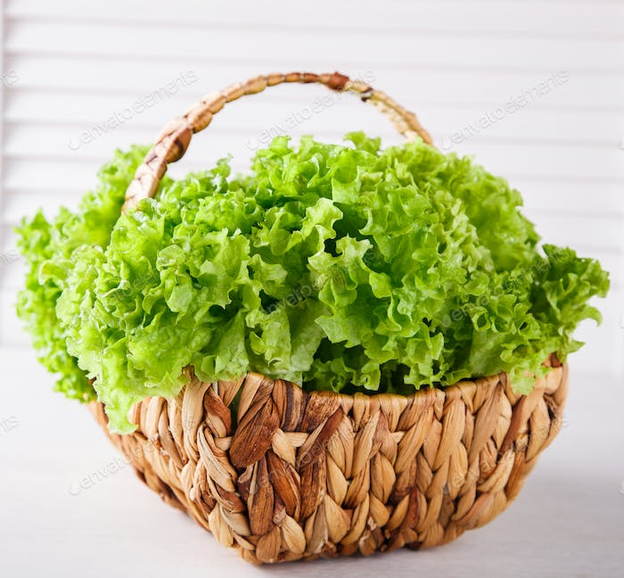 Fresh lettuce in a basket