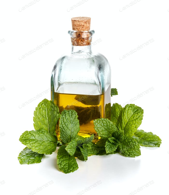 Olive oil with mint