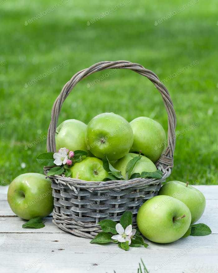 Fresh garden apples in basket