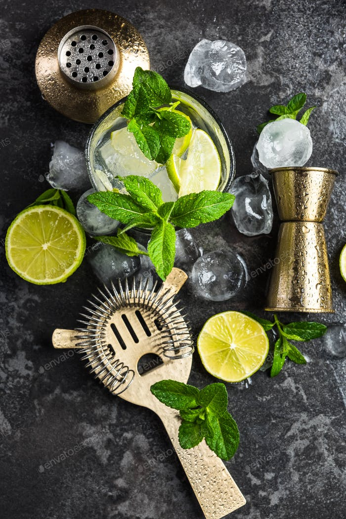 Fresh ingredients and tools for Mojito making at bar