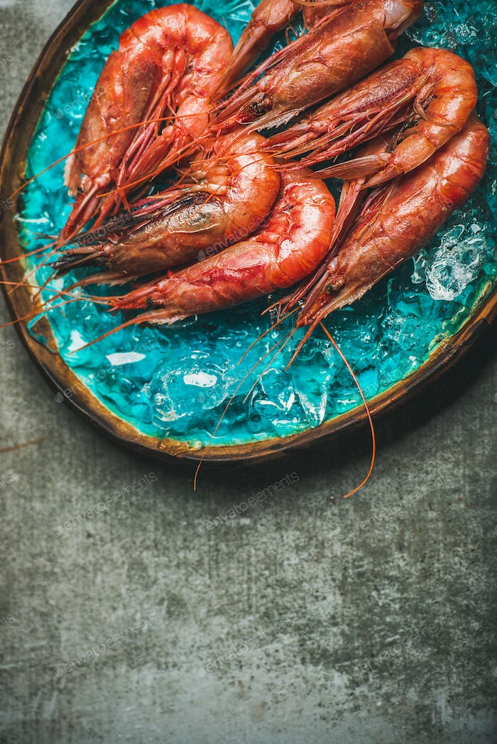 Raw uncooked red shrimps on ice, grey concrete background