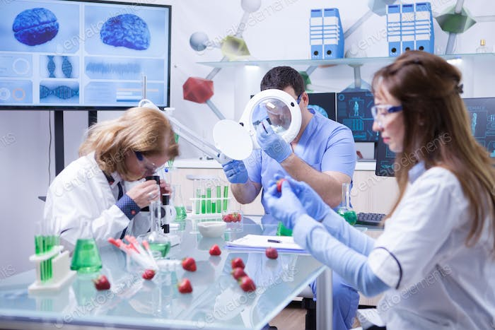 Team of researchers people testing strawberry fruits studying in laboratory room