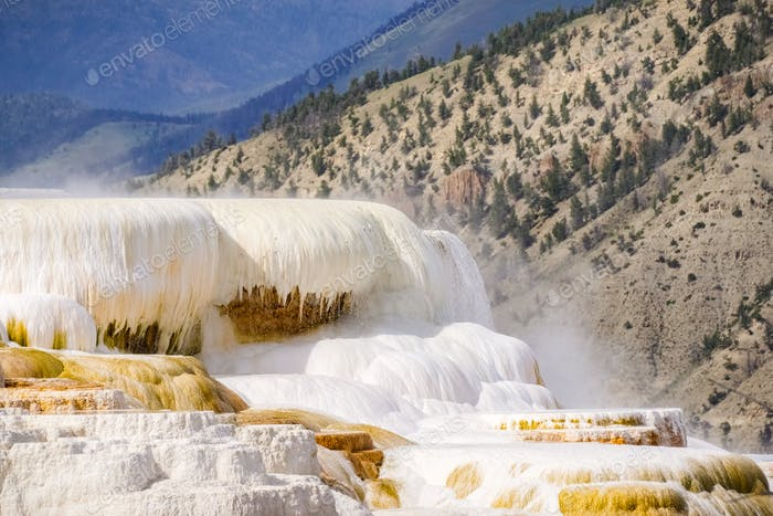 Active Hot Spring, Mammoth Hot Springs terraces, Yellowstone National Park, Wyoming