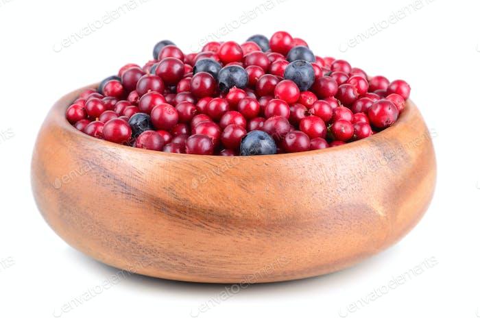 Autumn berrys
