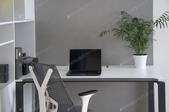 Modern office space interior. Computer work place daylight interior with open work space. Green