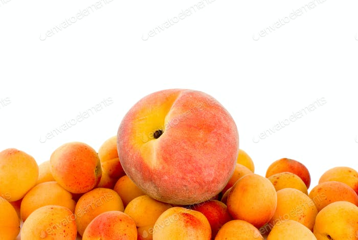 Red peach over the pile of apricots