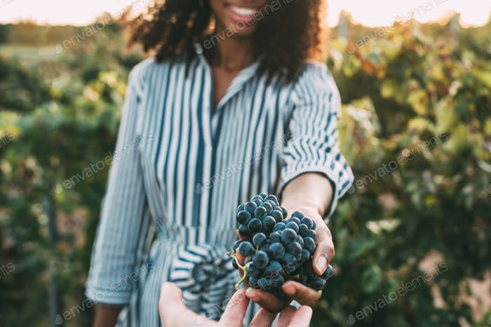Hands sharing a bunch of grapes with a happy blurred woman