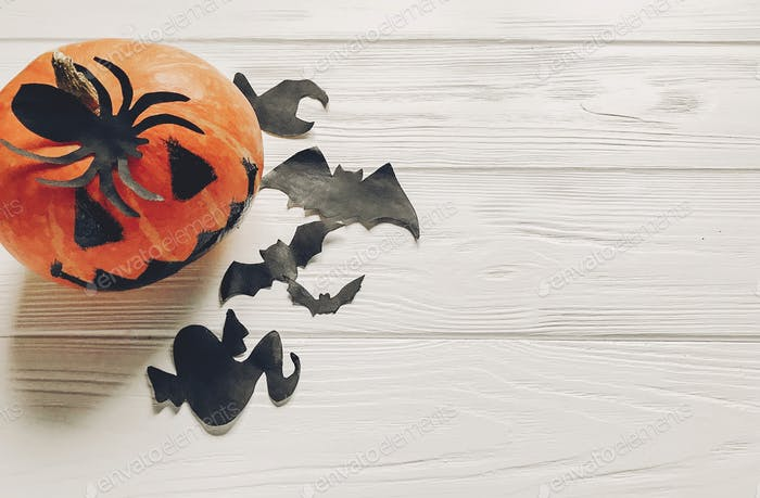 pumpkin with witch ghost bats and spider black decorations on white wooden background