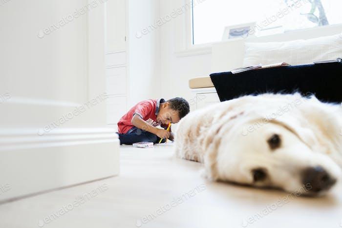 Junge studiert im Wohnzimmer mit Hund entspannt im Vordergrund
