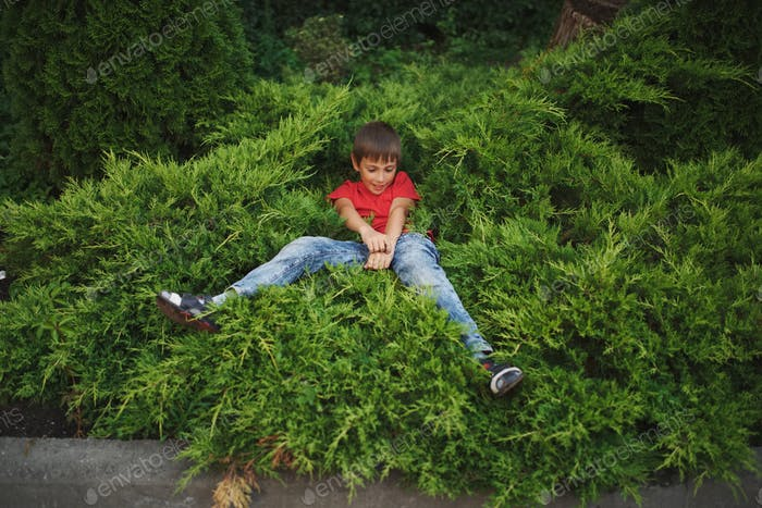 little boy lying on juniper