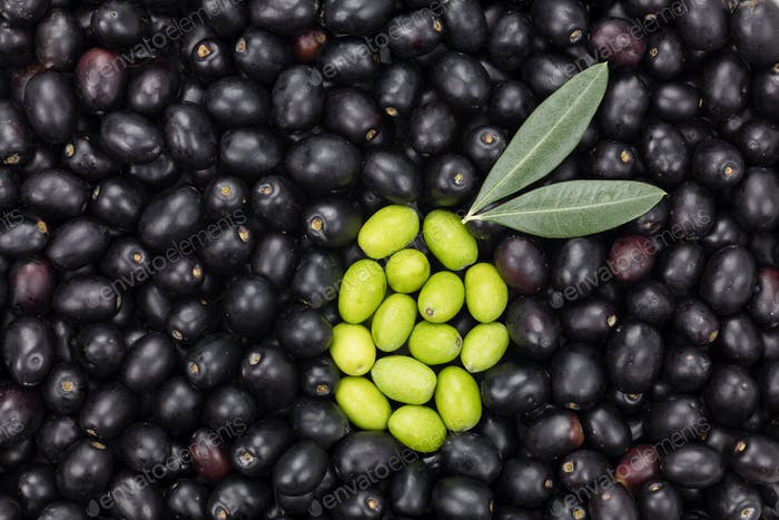 Green Olive shape on Black olive background. Fresh Harvested Oli