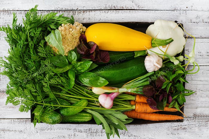 Set of different fresh vegetables. Proper nutrition. Dietary menu. Top view