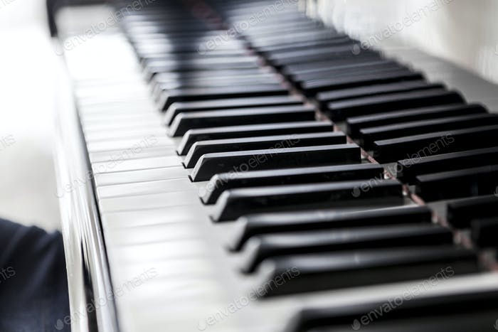 White Keys Of Music