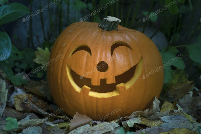 Orange kind smiling Halloween pumpkin