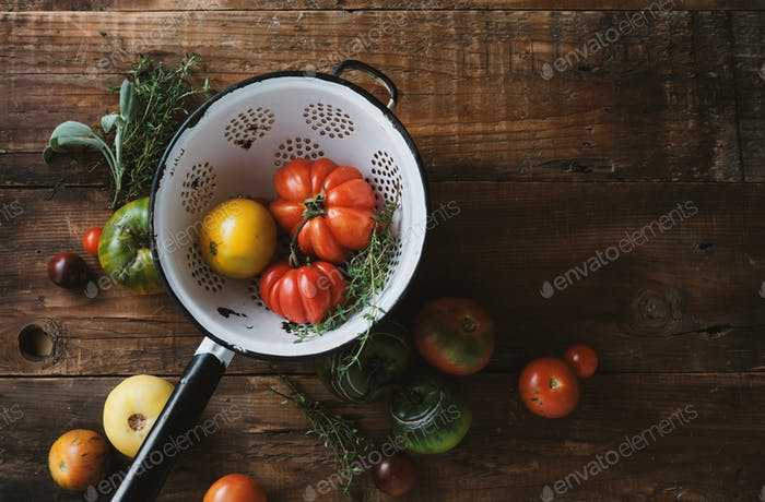 Organic tomatoes grown on the farm