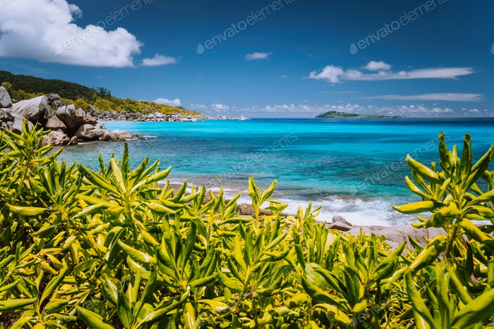 Tropical coast at La Digue island, Seychelles. Lush green vegetation, turquoise blue ocean and
