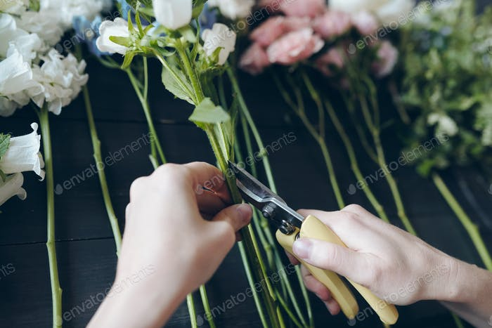 Close-up of unrecognizable female florist using hand pruners