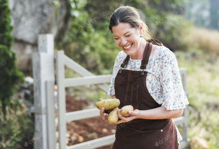 Happy woman collecting potatoes at farm