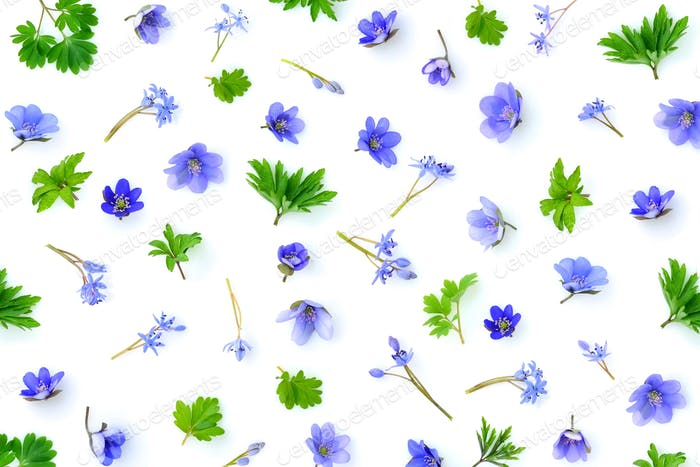 Floral pattern made of blue spring flowers, green leaves, bud on