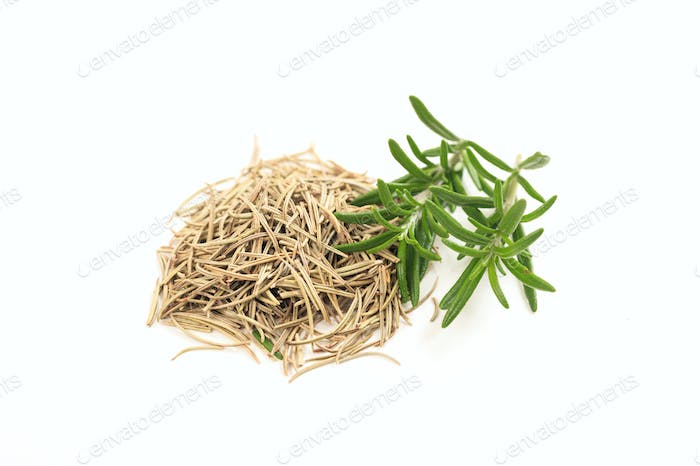 Fresh and dried rosemary on white background