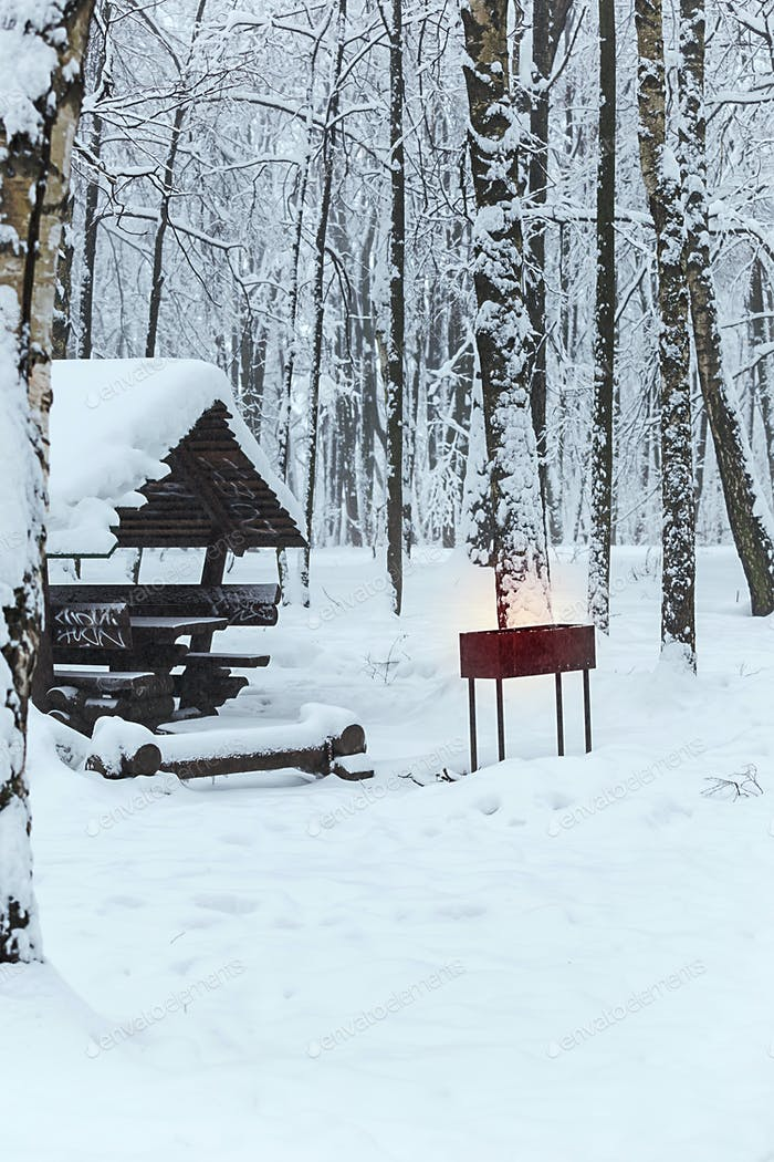 Barbecue house in a winter forest