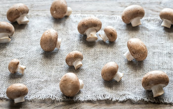 Brown champignon mushrooms on the canvas