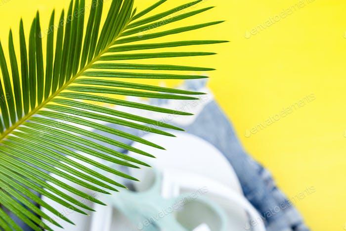Tropischer Hintergrund Palmen Zweige