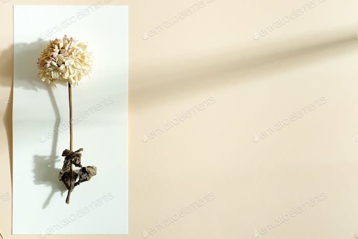 Decorative card with withered flower on a bifold paper