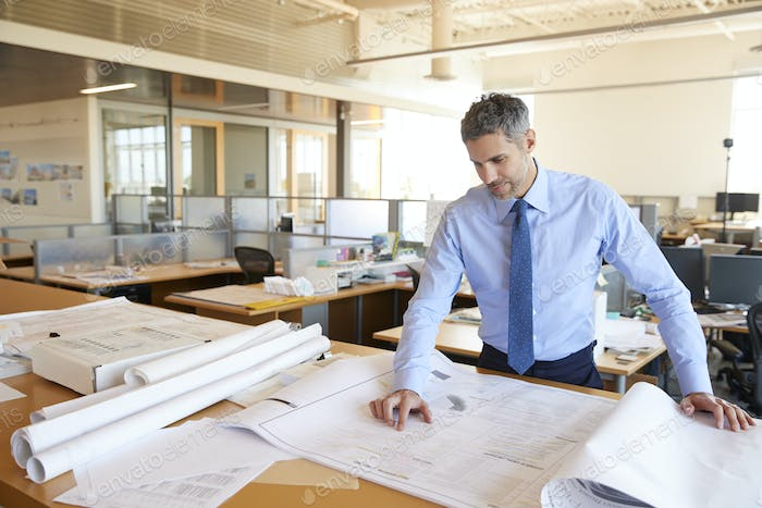 White male architect looking at plans in open plan office