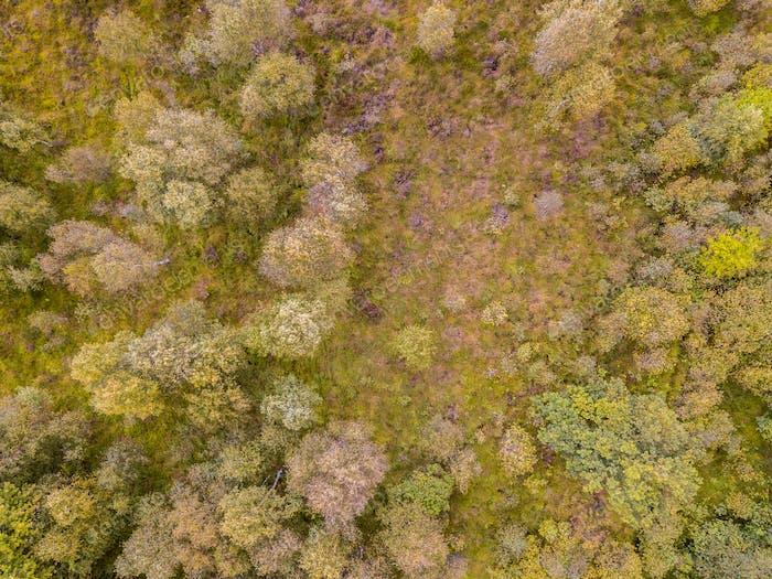 Luftbild Heathland