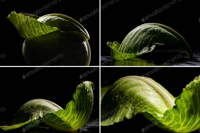 collage of wet green cabbage leaves isolated on black