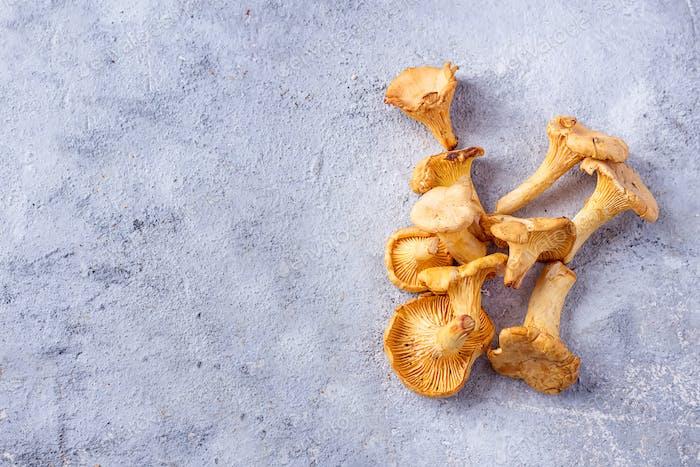 Pfifferling Pilze auf einem Steinbrett