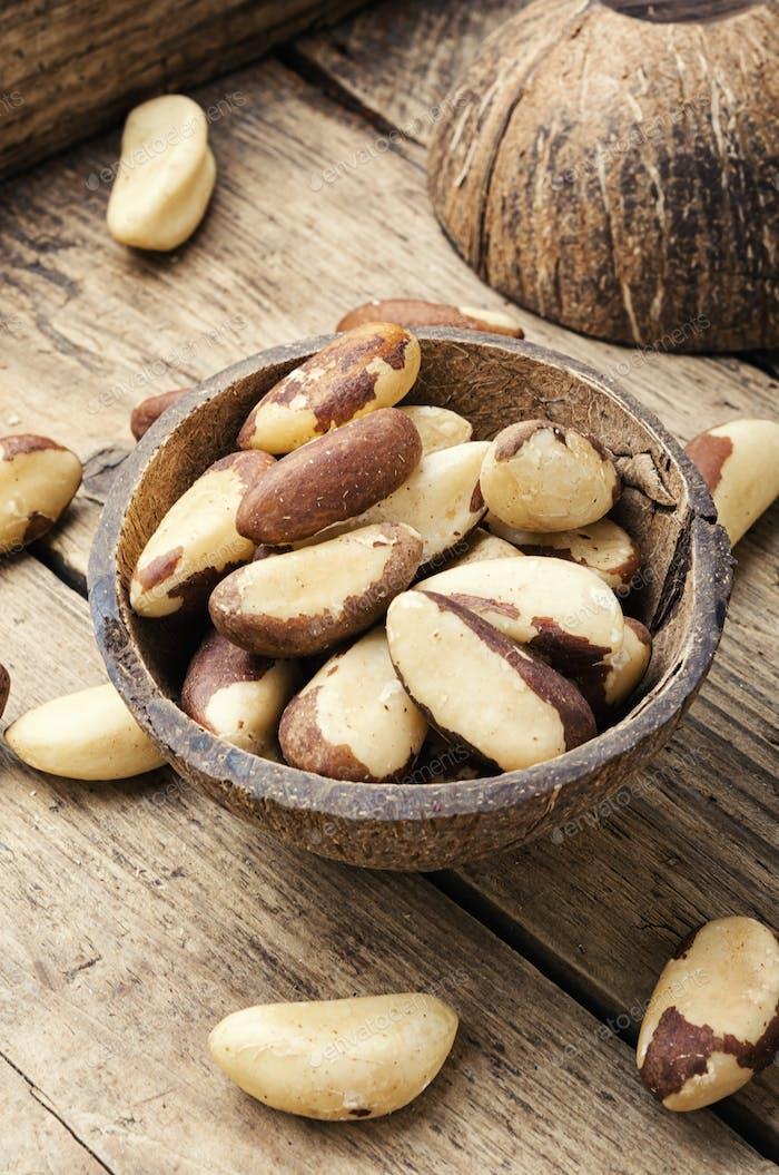 Brazil nut or Bertholletia