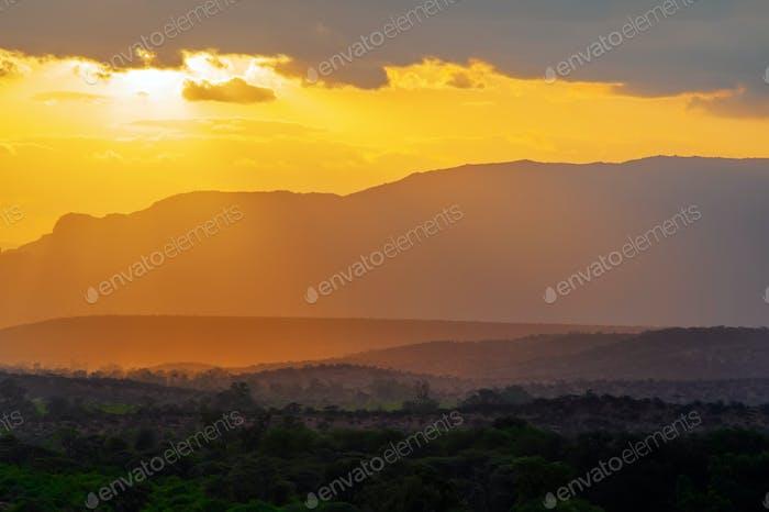Sunset in African savannah. Kenya