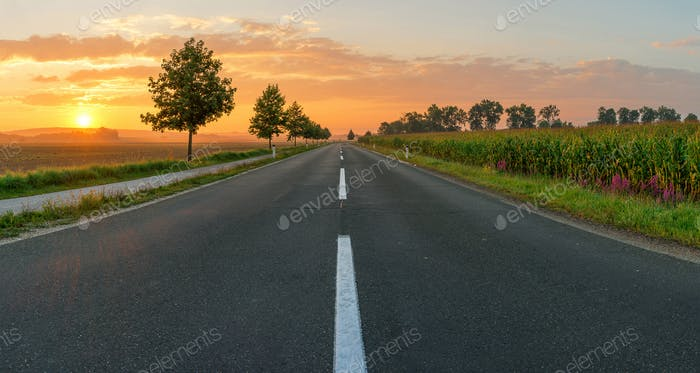 Countryside road leading to sunrise in Slovenia