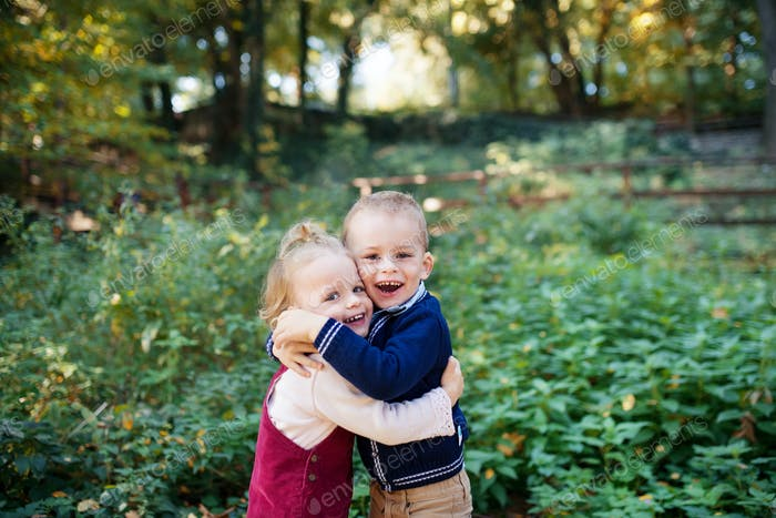 Twin toddler sibling boy and girl standing in autumn forest, hugging