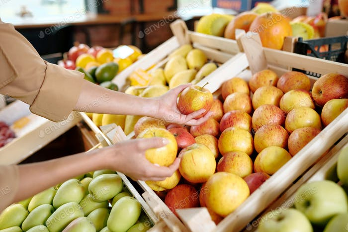 Hands of young woman taking two ripe yellow apples from wooden box