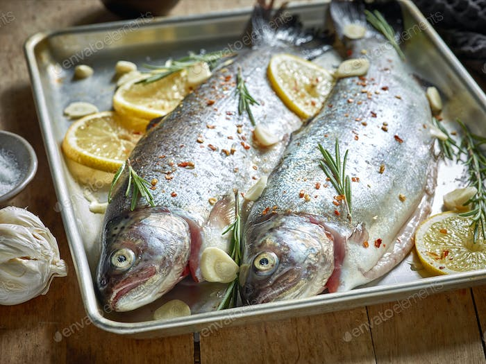 two raw trout fishes