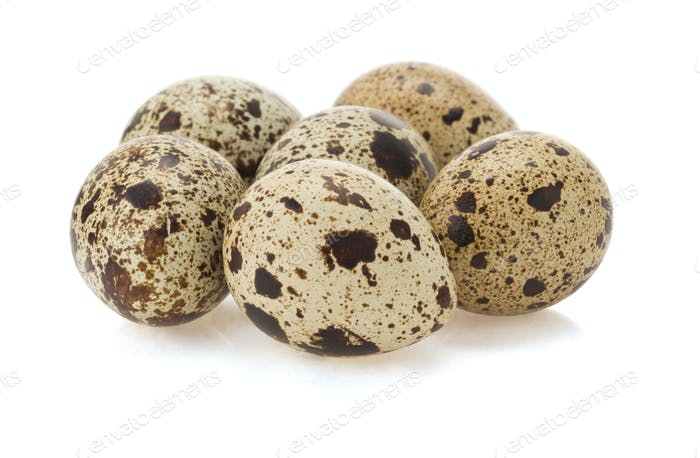 quail egg on white
