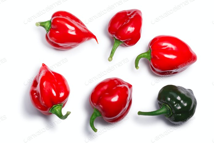 Habanero peppers (Capsicum chinense), top view, paths