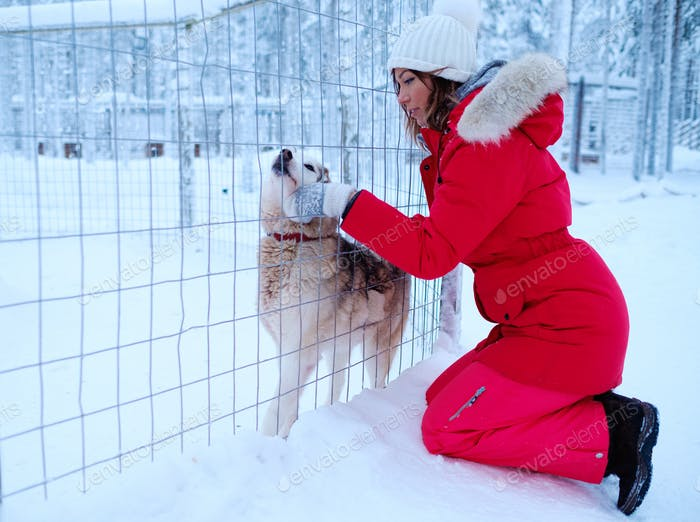 Happy woman playing with husky dog