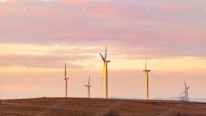 Wind turbines on the field in rural area.