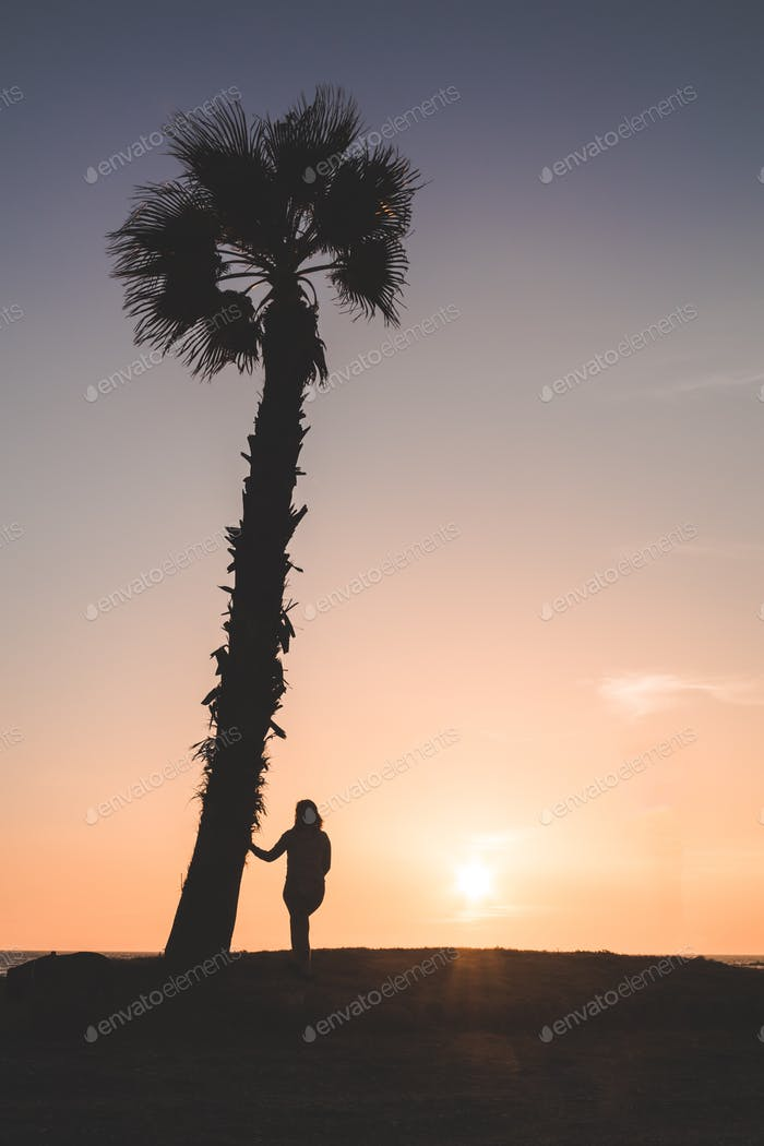 Woman watching sunset, next to a palm tree, at Almerimar, Almeria, Spain