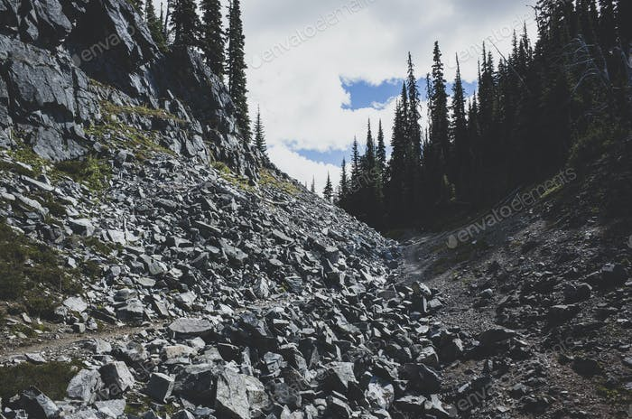 Rubble and path through a valley and forest