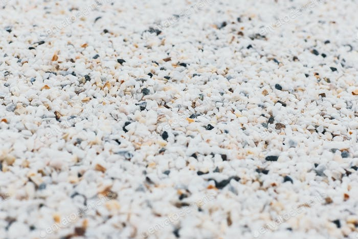 White gravel abstract texture background