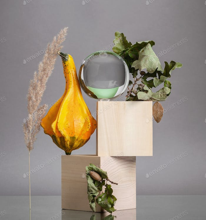 Creative modern still life of wooden elements and dried flowers