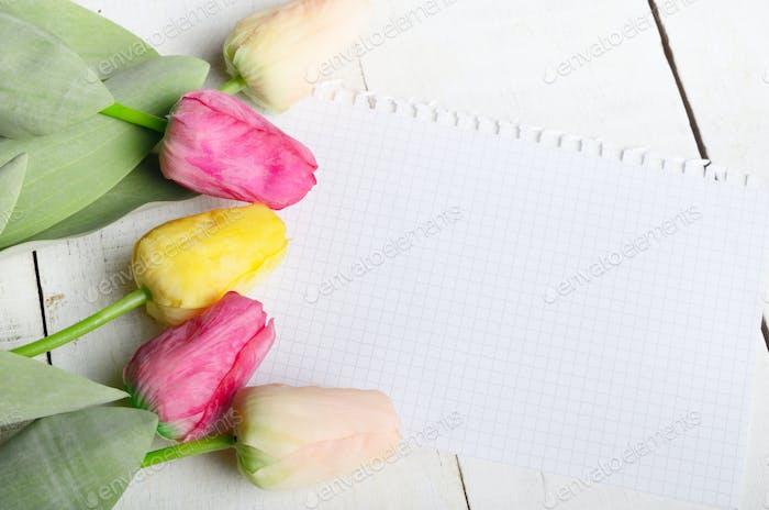 Hohe Winkel Schuss von orange rosig und gelb Frühling Tulpe Blumen ein